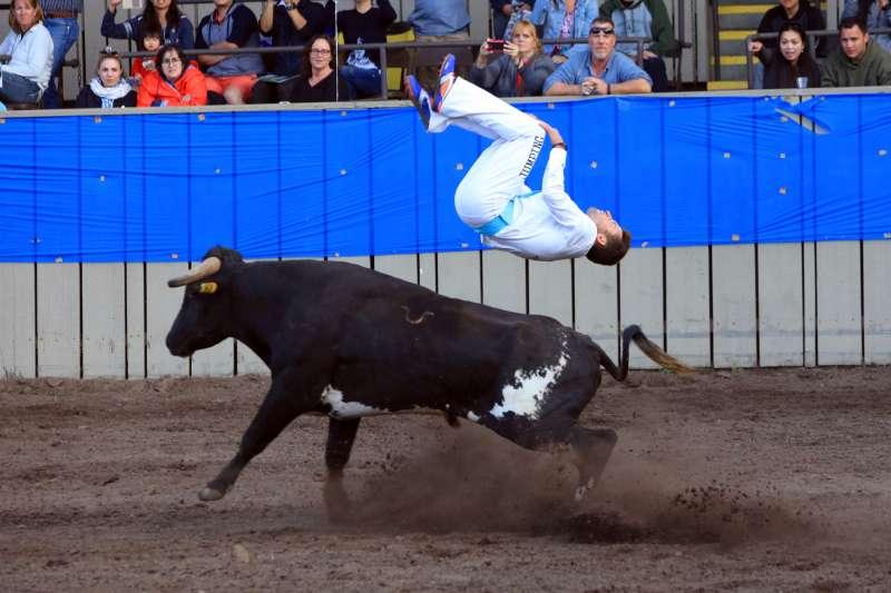 Fair Bull Entertainment